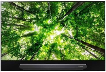 LG OLED65G8 Zwart